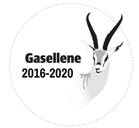 Gaselle 2016-2020 nummer 2